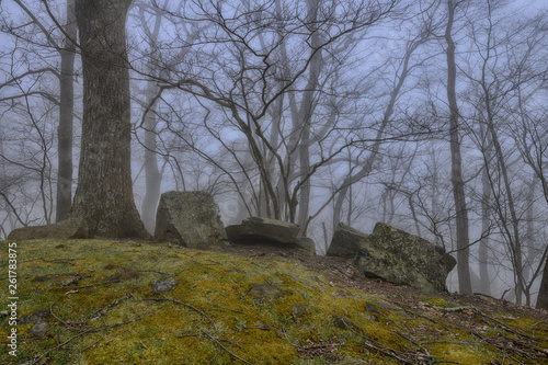"Photo  ""Evening Fog"" Clouds passing through the Mountain Top ZDS Blue Ridge Mountains C"