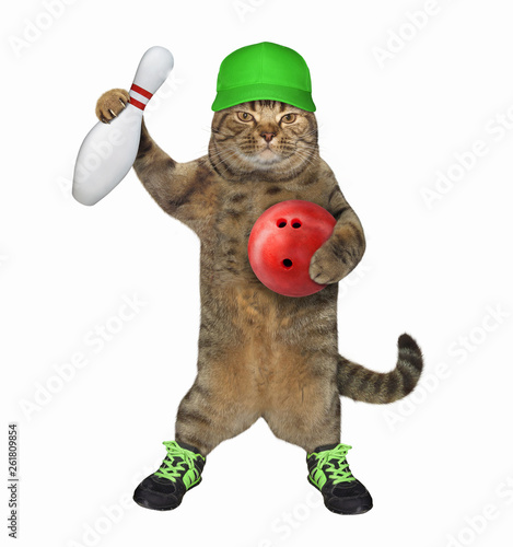 The cat player in a green cap and sports shoes holds a red