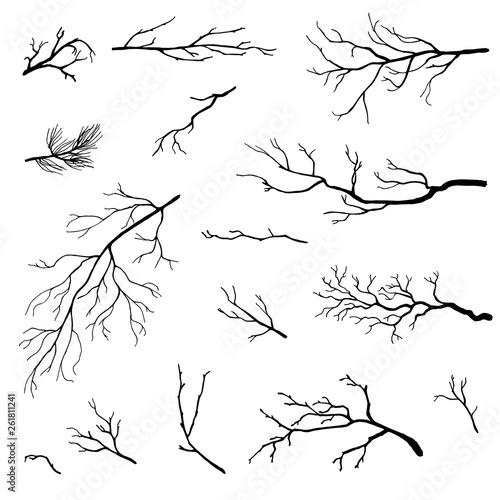 hand drawn branches set, vector Obraz na płótnie