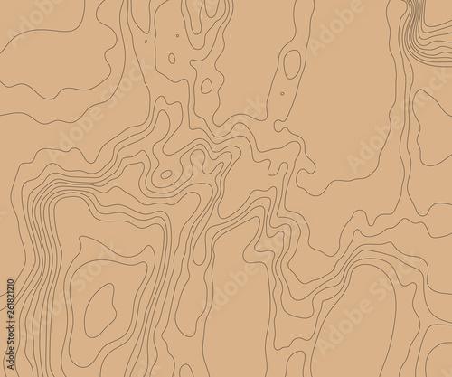 Fotografia  Topographic relief map of the earth. Vector illustration .