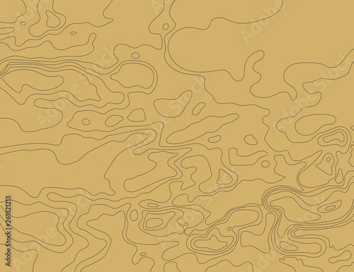 Fotografia  Topographic map on a brown background. Vector illustration .