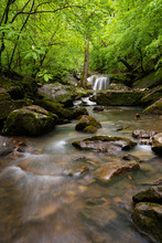 Peaceful Mountain Stream Forms...