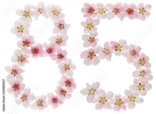 Fotografia  Numeral 85, eighty five, from natural pink flowers of peach tree, isolated on wh