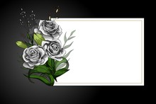 Rose Flower Bouquet On White F...