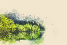 Watercolor Illustration. The Trees On The Shore Of The Lake