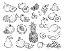 Sketch Fruits. Strawberry Melon, Peach Mango. Banana Pineapple, Raspberry Grapes Hand Drawn Fruit Berry Vector Set. Illustration Of Melon And Banana, Cherry And Lemon
