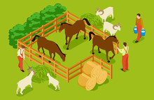Animal Farm, Livestock With Horses, Goats, Sheeps And Workers Isometric Vector Illustration. Livestock Farm Isometric, Horse And Sheep