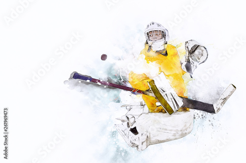 Ice hockey Goalkeeper Canvas Print