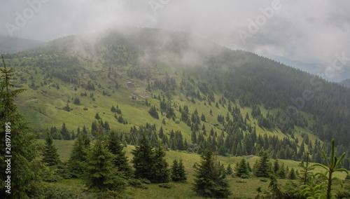 Foto auf Gartenposter Hugel Trekking in the Carpathians through Petros to Hoverla along the Montenegrin ridge to Pop Ivan