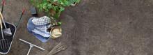 Man Gardening Work In The Vege...