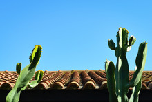 Low Angle View Of Tile  Roof  ...