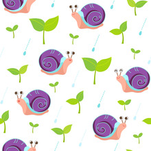 Snail And Sprout On Rainy Day ...