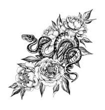 Hand Drawn Monochrome Creeping Python Among Peony Flowers