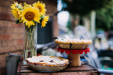 Blackberry Pies And Sunflower