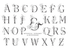 Floral Botanical Alphabet. Let...