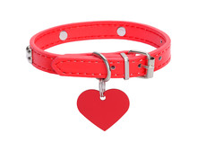 Red Dog Collar With Heart Tag