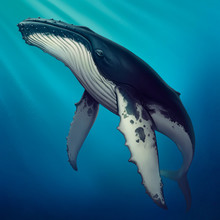 Whale Under Water Realistic Illustration Of A Copis. Humpback Whale In The Open Sea. Figure Humpback Gray Whale Blue Sea.