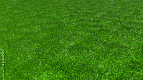 Foto op Plexiglas Groene artificial grass, texture of green grass, 3d rendering, trugreen, processed with lawn mower and aerator