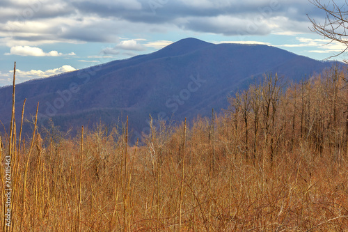 View of a mountain peak from the Three Ridges overlook, located along the Blue Ridge Parkway near Wintergreen Resort, Virginia
