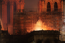 Burning Roof Of Notre Dame Cat...