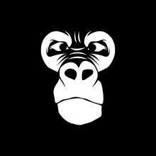 Gorilla Head Vector Logo