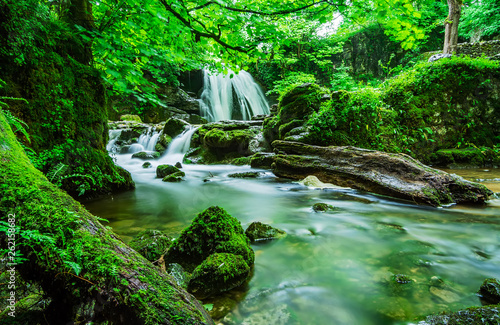 Printed kitchen splashbacks Forest river Beautiful nature cascade creek environment fern in forest