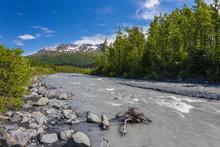Exit Glacier In Kenai Fjords N...
