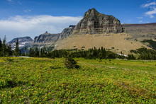 Logan Pass In Glacier National Park In Montana, United States