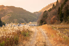 Narrow Dirt Road Through Dry Grasses Leading To Small Japanese Farming Village