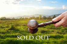 Sold Out  Land,wooden Gavel  O...