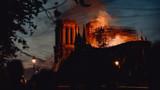 Fototapeta Paryż - Notre Dame de Paris ravagée par les flammes