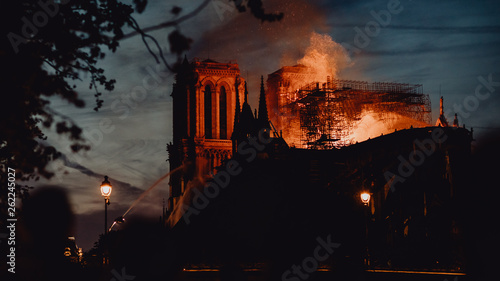 Poster de jardin Paris Notre Dame de Paris ravagée par les flammes