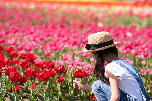 Photo Stands Candy pink チューリップ畑で遊ぶ女の子