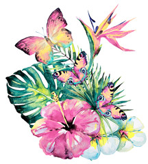 Fototapeta Egzotyczne beautiful tropical palm leaves and flowers, watercolor