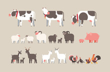 Set Farm Animal Cow Goat Pig Turkey Sheep Chicken Icons Different Domestic Animals Collection Farming Concept Flat Horizontal