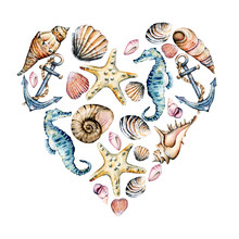 Seashells Heart, Marine Scenery. Watercolor Seahorse, Starfish And Other Shells. Travel, Beach Design Isolated On White Background. Hand Drawing.