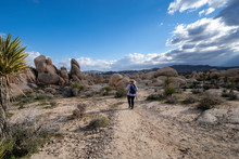 Young Woman Female Hiker Wearing A Backpack Starts Off On A Hiking Trail In Joshua Tree National Park, To The Arch Rock