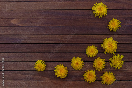 In de dag Zonnebloem Frame of yellow dandelion flowers on dark brown wooden background with free space for text top view