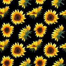 Seamless Pattern With Sunflowe...