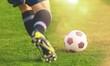 Leinwandbild Motiv Running soccer player on grass