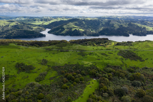 click for Wall Murals price · A wet winter in California has caused lush growth in the East Bay hills near San
