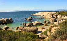 Boulder's Beach Cap De Bonne Espérance Afrique Du Sud
