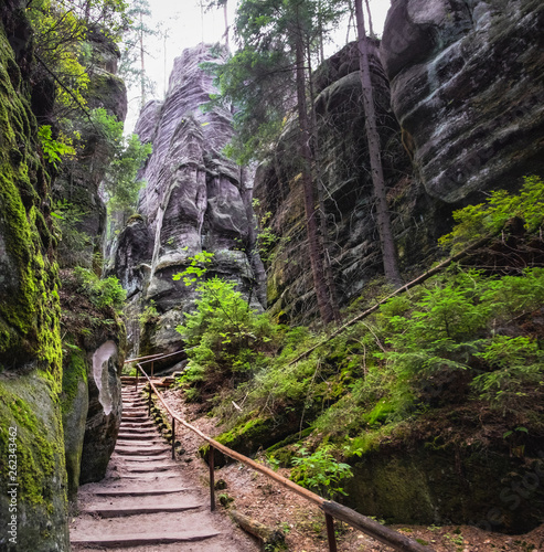 Poster Kaki The path winding between the famous sandstone rock towers of Adrspach and Teplice Rocks. Adrspach National Park in northeastern Bohemia, Czech Republic, Europe