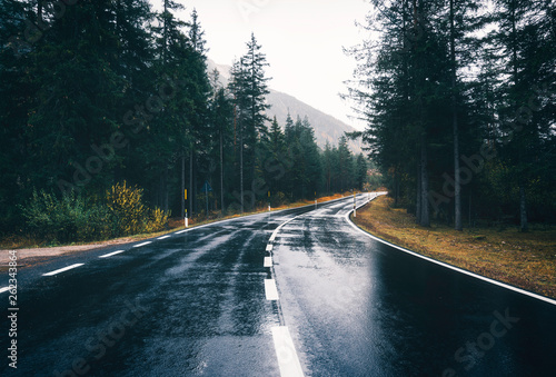 Leinwand Poster Road in the spring forest in rain