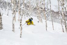 Skiing Powder Through Aspen Trees Of Mount Niseko, Japan Backcountry.