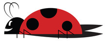 A Cute Little Lady Bug Vector ...