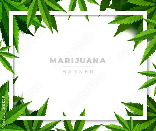 Photo Green cannabis leaf drug marijuana herb Background.