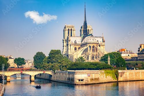 Fotografia  Notre Dame de Paris at spring, France