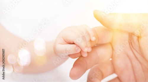 New born baby hand holding kuman hand on white background Canvas Print