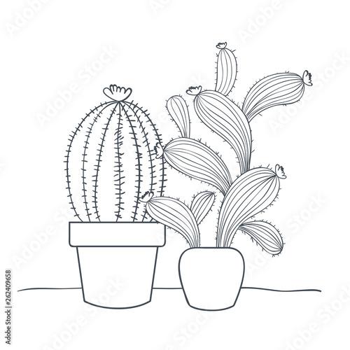 Fototapeta cactus with potted isolated icon obraz na płótnie